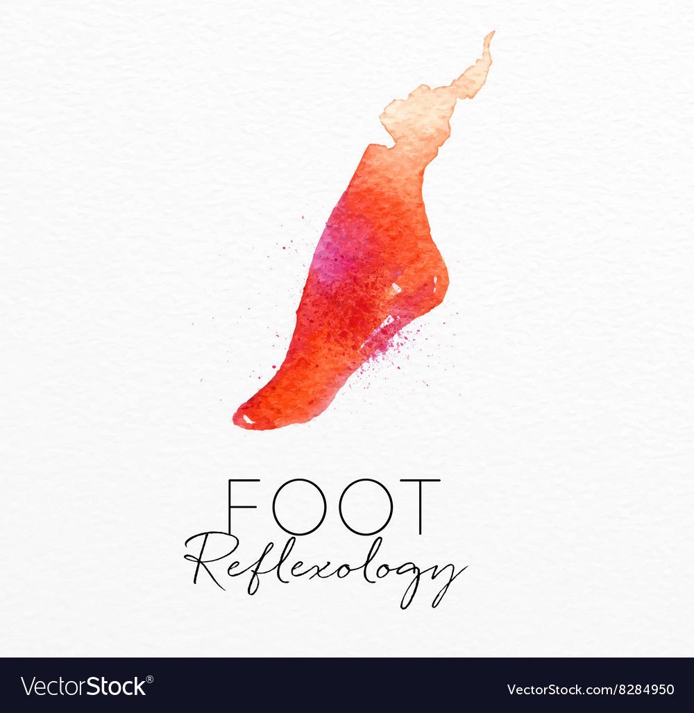Beauty natural spa foot vector