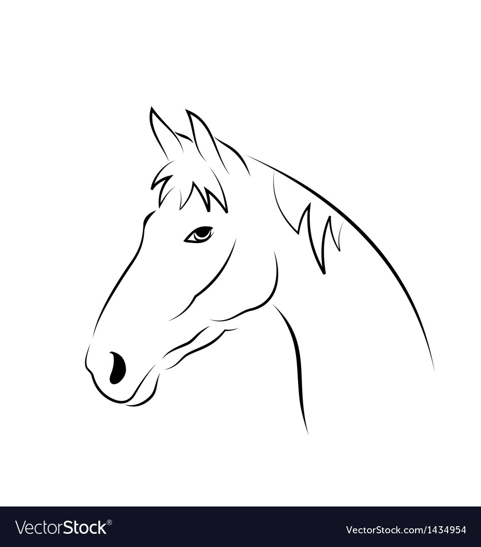 Outline head horse isolated on white background vector