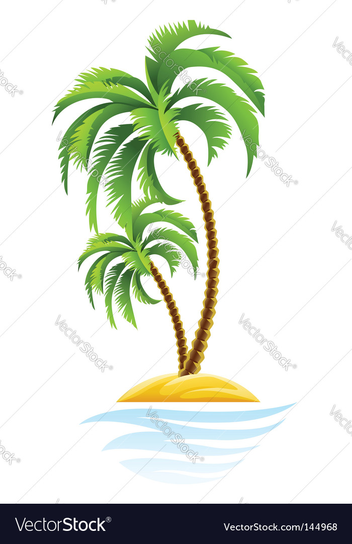 Tropical palm on island vector