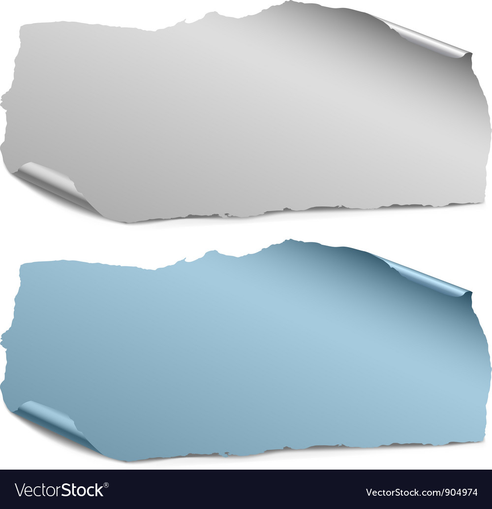 Collection of color ripped paper pieces vector