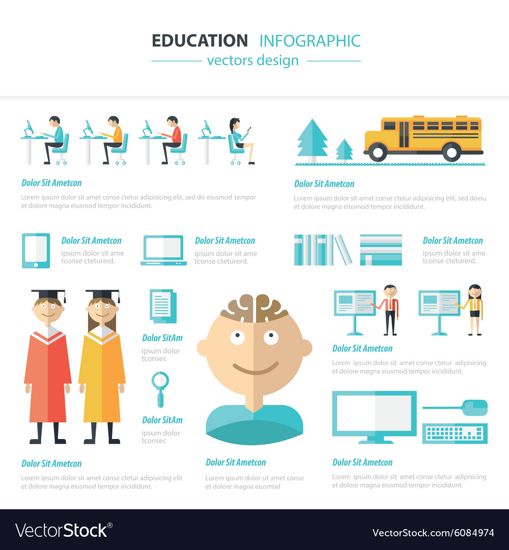 Infographic education template design concept vector
