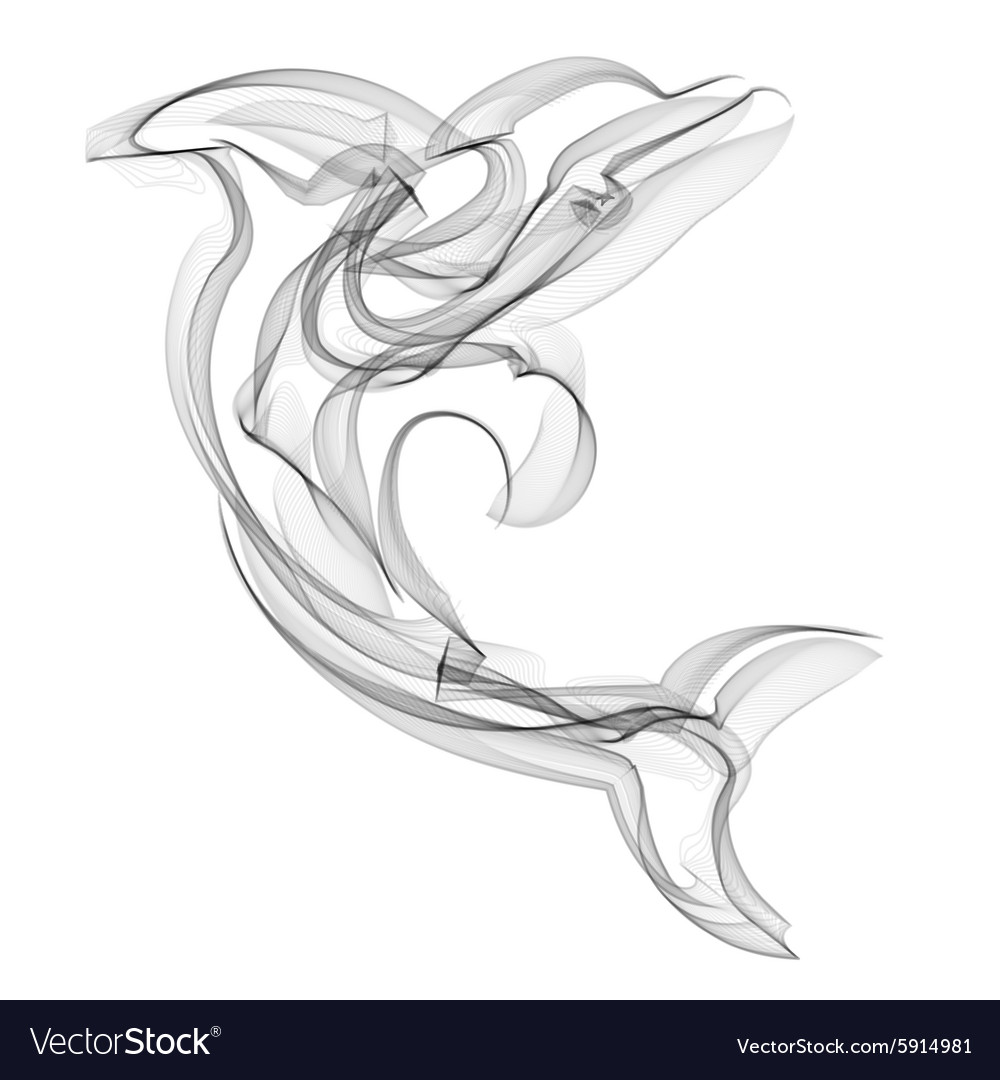 Dolphin silhouette on white background vector