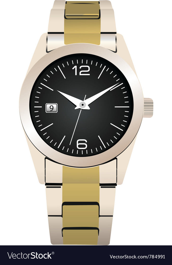 Expensive watch vector