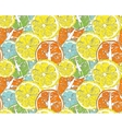 Hello Summer orange lemon vector image