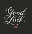 hand drawn lettering - good luck elegant modern vector image
