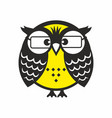 clever owl with glasses vector image