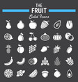 fruit solid icon set food symbols collection vector image