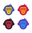 ape monkey with glasses vector image