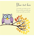 Owl on an autumn branch with place for your text vector image