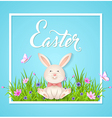 Rabbit sitting on a green grass vector image vector image