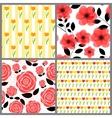 Floral Seamless Pattern Background Set vector image
