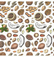 seamless pattern with colored nuts and seeds vector image