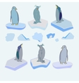 The penguins on ice floes Christmas vector image