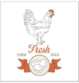 Farm Fresh Eggs vector image
