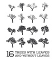 Set of Trees in Silhouettes Black and White With vector image