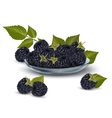 Blackberries in a glass bowl vector image vector image