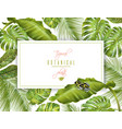 tropical horizontal banner vector image