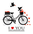 birds in love on top of a bicycle vector image