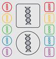 DNA icon sign symbol on the Round and square vector image
