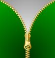 Metallic zipper vector image