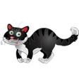 Black fun cat vector image vector image