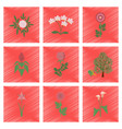 assembly flat shading style plant flower paeonia vector image