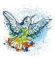 hummingbird with watercolor splashes vector image