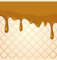 melting caramel on wafer texture vector image