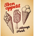 Sorts of Ice Cream in a waffles Hand drawn vector image