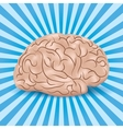 Healthy brain on a blue background with lines Vector Image