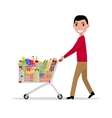 Man with shopping trolley full groceries vector image