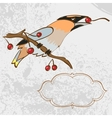 greeting card with singing bird vector image