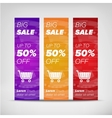 Big sale vertical banners vector image