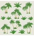 Tropical palm trees set vector image