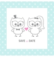 Wedding owls vector image