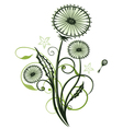 Dandelion with leaves vector image