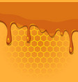 melting honey on honeycomb texture vector image