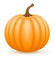 Pumpkin stock vector image