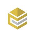 abstract hexagon business finance logo vector image