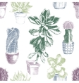 Hand drawn pattern with cactuses and succulents vector image vector image