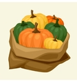 stylized sack with fresh ripe pumpkins vector image