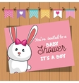 invitation baby shower card with bunny desing vector image