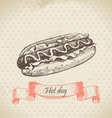 Hot dog hand drawn vector image vector image