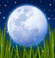Full moon and grass meadow vector image
