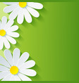 Spring abstract floral background 3d flower vector image
