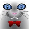 abstract cat face with big eyes vector image
