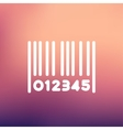 Barcode thin line icon vector image