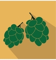 Hop flat icon vector image