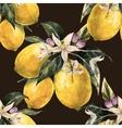 Watercolor lemon pattern vector image