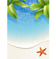Palm leaves over water vector image